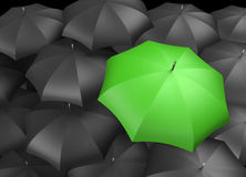 Green umbrella outstanding from black umbrellas. Green umbrella standing out from background of black umbrellas Royalty Free Stock Images