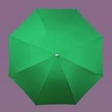 Green umbrella Royalty Free Stock Image