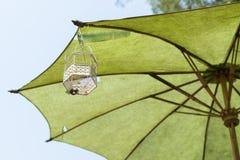 Green umbrella. A white flowerpot hanging on green umbrella Royalty Free Stock Photos