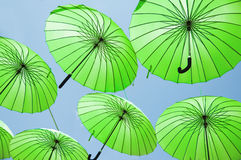 Green umbrellas. Royalty Free Stock Photography