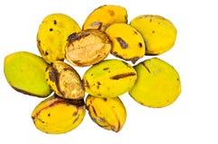 Green unripe almonds Stock Image