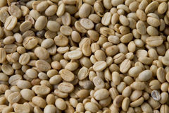 Green unroasted coffee beans Royalty Free Stock Photos