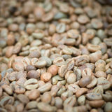 Green unroasted coffee beans Royalty Free Stock Photography