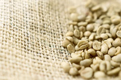 Green unroasted Coffee Beans in a sack. Stock Images