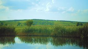 Green valley beyond a river stock footage