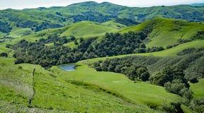 Green Valley, Cambria, California Royalty Free Stock Photos