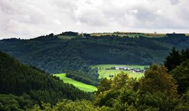 Green valley with farm and cows Royalty Free Stock Photo