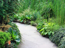 Green valley  in garden Stock Photo
