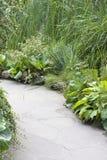 Green valley  in garden Stock Photos