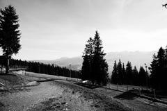 Green valley in the high Tatra mountains in Zakopane, Poland. Royalty Free Stock Image