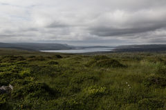 Green valley and lake in cloudy weather, highlands. Royalty Free Stock Images