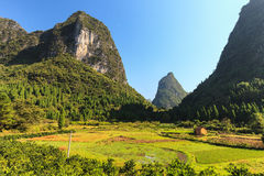 Green valley with Limestone rocks in Asia Royalty Free Stock Image