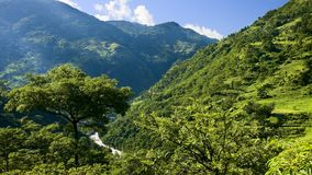 Green valley in the lower Himalayan peaks stock images