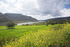 Green valley of mountain river. Hills and clouds Royalty Free Stock Images