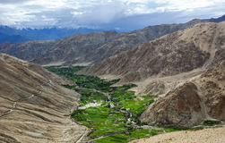 Green valley with mountains in Leh, India Royalty Free Stock Images