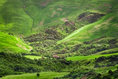 Green valley in the mountains of Tuscany Royalty Free Stock Images