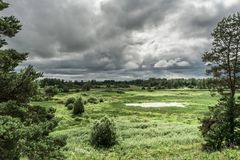 Green valley with a natural pond, shrubs and trees, rain sky, summer dull windy day. Green valley with a natural pond, shrubs and trees, gray rain sky, summer stock image