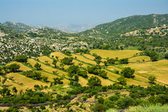 Green Valley Pakistan. This valley is situated near Sakesar north west of Khushab District, Punjab, Pakistan Royalty Free Stock Image