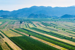 Green valley with rich crops. Panoramic view of the green valley with rich variety of crops with blue hills and sky in the background Stock Image