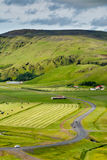 Green valley with road near Vik, Iceland on overcast summer day Royalty Free Stock Photography