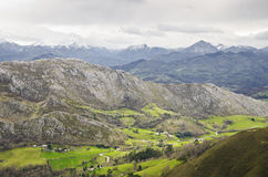 Green valley on the mountains in Asturias, Spain Stock Photography