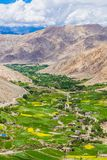 The green valley surrounded by  mountains, ladakh, india Stock Photography