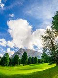 A green valley of Trentino Alto Adige in Europe, with trees and mountain in the background. Vertical view stock image