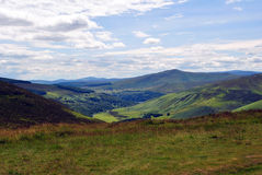 Green valley in wicklow ireland Royalty Free Stock Photography