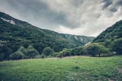 Green valley  and wood in a mountain area Royalty Free Stock Photos