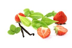 Green Vanilla leaves with red strawberries Royalty Free Stock Image