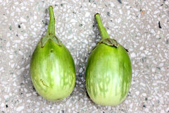 Green variegated brinjal. Solanum melongena, Solanaceae, cultivated plants with purple flowers, F1 hybrid with green oval fruits creamish-yellow variegated in stock images