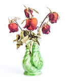Green vase full of dried roses Stock Photos