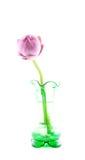Green vase and pink lotus. Isolation on white blackground Royalty Free Stock Photo