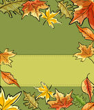 Green Vector abstract background. With autumn leaves Royalty Free Stock Images