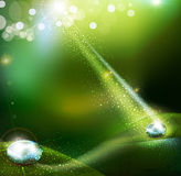 Green vector background with. A drop of dew Stock Images
