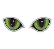 green vector cat eyes stock photos