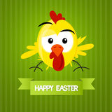 Green Vector Easter Background. With Yellow Funny Chicken Stock Images
