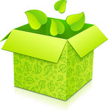 Green vector gift box with foliage inside Royalty Free Stock Photo