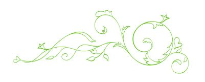 Green Vector Hand Drawn Calligraphic Separator. Spring Flourish Design Element. Floral light style decor for greeting. Card, web, wedding and print. Isolated on royalty free illustration