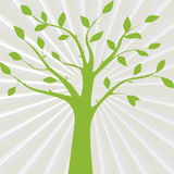 Green vector illustration of tree silhouette on the abstract gra Stock Photo