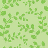 Green vector seamless pattern with green plants Stock Photo