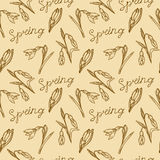 Green, vector, spring, nature, flower, illustration, snowdrop, b Royalty Free Stock Image