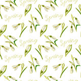 Green, vector, spring, nature, flower, illustration, snowdrop, b Royalty Free Stock Photography