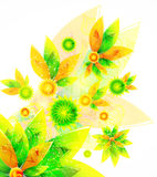Green vector summer background Royalty Free Stock Images