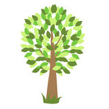 Green vector tree with grass Royalty Free Stock Photo