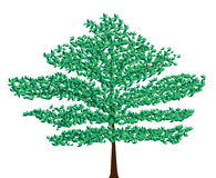 Green vector tree. Green tree isolated on white background stock illustration