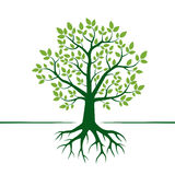 Green Vector Tree and Roots. Vector Illustration. stock illustration