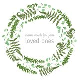 Green vector wreath frame made from twigs and leaves of eucalypt. Us, boxwood and fern isolated on white background. For wedding invitations, postcards, posters vector illustration