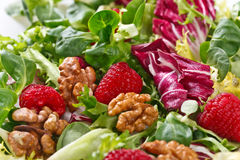 Green vegan salad with raspberry and nuts Royalty Free Stock Photo