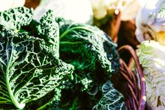 Green Vegetable on Basket Royalty Free Stock Photography